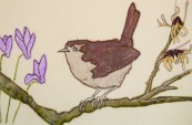 Wren and witchhazel
